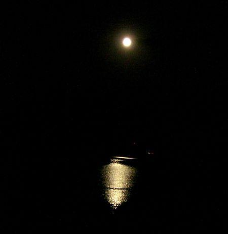 Harvest moon 1