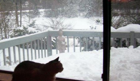 Tink & snow 2 (2)