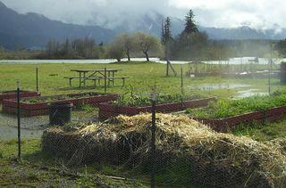 Community garden gorge spring 3 (3)