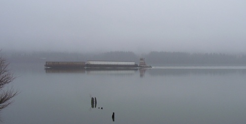 Foggy_river_tug_2