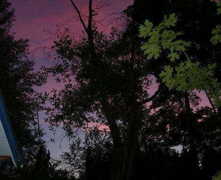 Night_sky_6