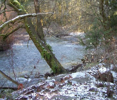 Snowy_creek_1