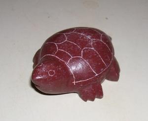 Turtle_2_2